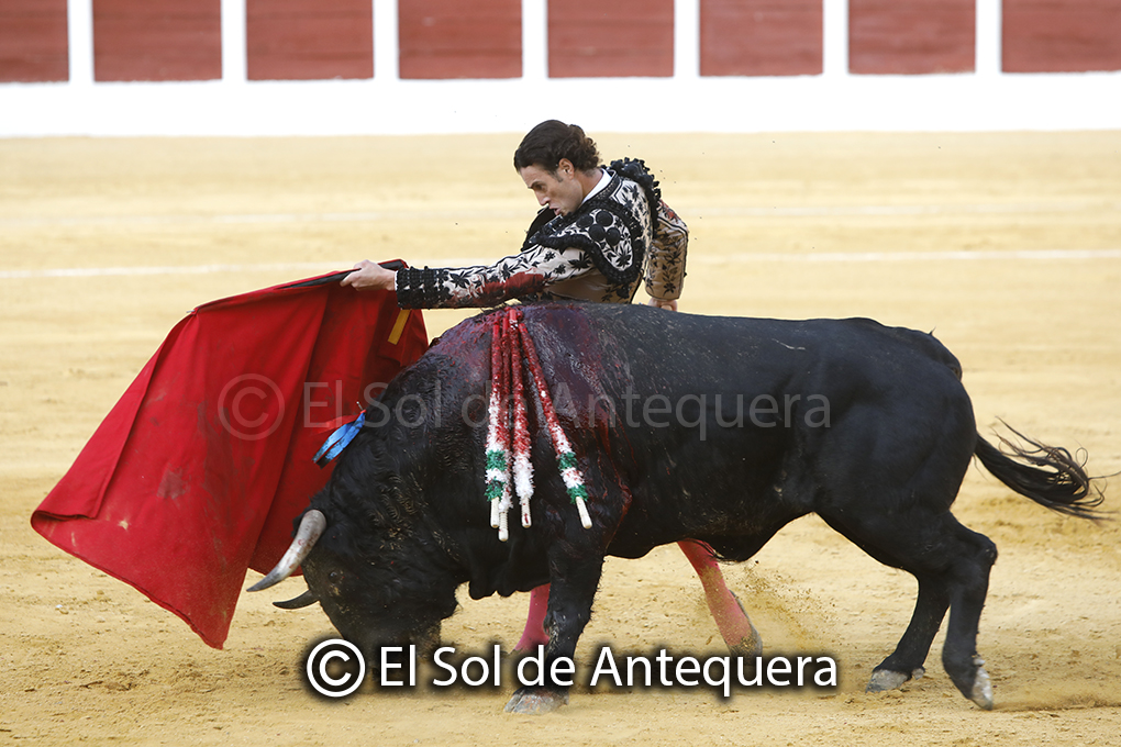 Click to enlarge image toros_indulto_antequera_01_102020.jpg